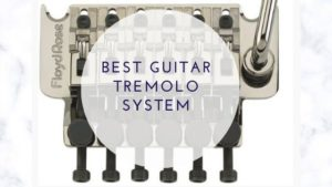 Best Guitar Tremolo System